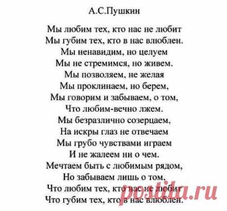 (55) Одноклассники