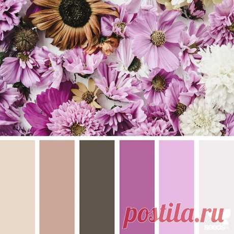today's inspiration image for { flora hues } is by @alajamie ... thank you, Jamie, for another inspiring #SeedsColor image share!