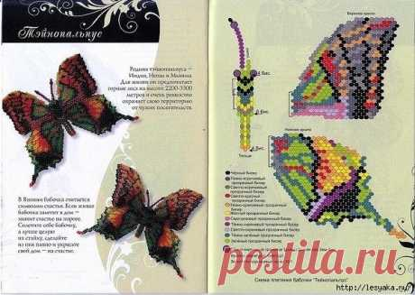 Different types of butterflies from beads