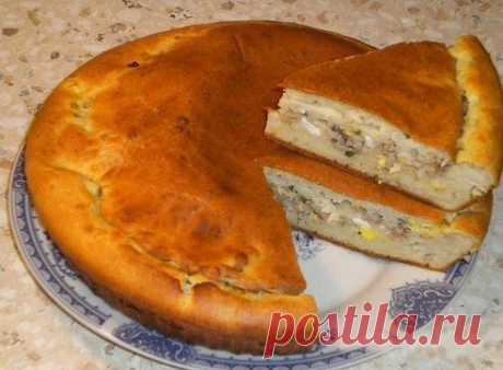 Быстрый пирог на сметане или кефире с мясом