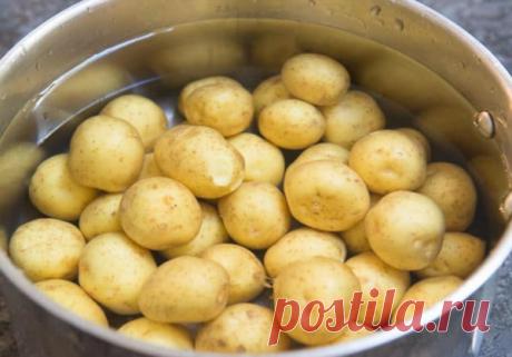 Такую картошку стоит попробовать! | Белкины Рецепты | Яндекс Дзен