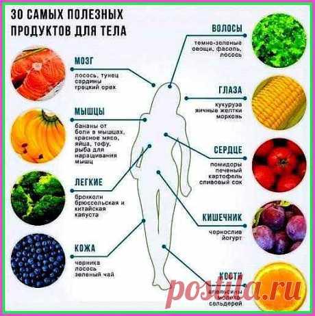 Правильное питание - раздельное питание КАКОЕ ПИТАНИЕ - ТАКОЕ И ЗДОРОВЬЕ