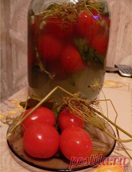 Засолка помидоров холодным способом!!! Быстро, без кипячения, а главное очень вкусно!!!