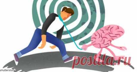 Всего 6 месяцев каждодневных прогулок - и старение мозга обернется вспять Оказывается, мозг можно ″омолодить″? Не хотите, чтобы ваш мозг состарился? Новое исследование, опубликованное CNN, говорит, что учащенное сердцебиение во время ходьбы или езды на велосипеде всего три раза в неделю, улучшает когнитивные функции мозга...