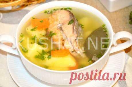 Суп из рыбной консервы сардины с рисом. Пошаговый рецепт с фото • Кушать нет