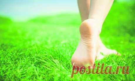 Профилактическая забота о ногах, с которых начинается старение всего организма