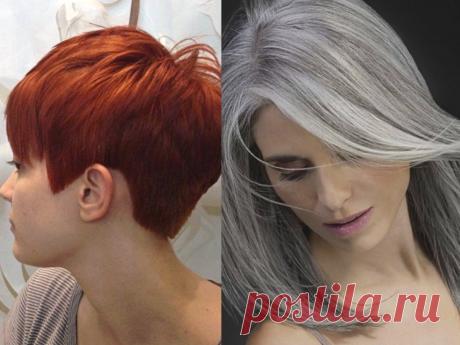 Какая краска для седых волос лучше   Наталья Кононова   Яндекс Дзен