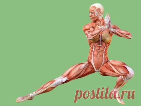Гимнастика для долголетия и баланса организма / Будьте здоровы