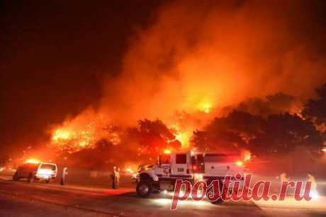 Лесные пожары в Санта-Барбаре . Тут забавно !!!