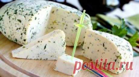 Все, что она сделала: взяла банку молока, добавила 100 миллилитров уксуса и получила вкуснейший домашний сыр.