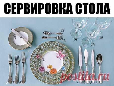 Сервировка стола    1. Тарелка для горячего.  2. Закусочная тарелка.  3. Тарелка для хлеба.  4. Закусочная вилка.  5. Вилка для рыбы.  6. Столовая вилка.  7. Столовый нож.  8. Нож для рыбы.  9. Закусочный нож.  10. Столовая ложка.  11. Нож для масла.  12. Десертная ложка.  13. Десертная вилка.  14. Бокал для воды.  15. Бокал для белого вина.  16. Бокал для красного вина. #сервировка