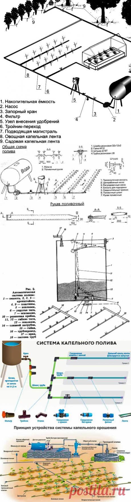 Капельный полив на даче — схемы организации систем орошения | Мои Идеи Для Дачи и Сада