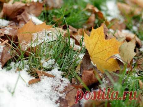 Народные приметы про первый снег Первый снег— это всегда волнующий момент. Вомногих культурах люди издревле считали день, когда впервые выпадает снег, очень важным инеобычным.