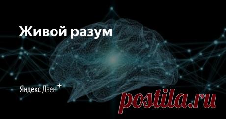 Живой разум   Яндекс Дзен Практикующий кадастровый инженер решил создать этот канал, чтобы найти в нем отражение пережитого опыта, собственных мыслей и планов на будущее.  Вопросы, которые я собираюсь поднимать: ✔️кадастр, регистрация, помощь советом ✔️инвестирование ✔️изучение иностранного языка ✔️эмоциональные переживания