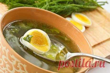 Рецепты супов из щавеля – легко и вкусно! / Простые рецепты
