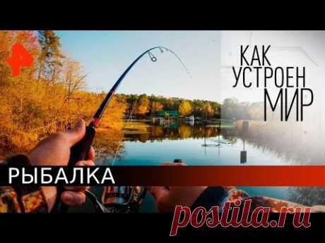 Рыбалка. Как устроен мир с Тимофеем Баженовым (18.05.20).