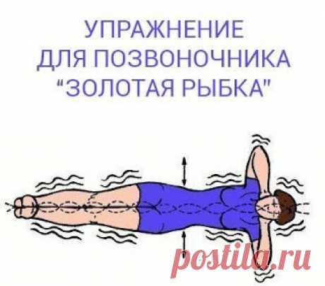 """Я выживаю везде!: Упражнение для позвоночника """"Золотая рыбка"""""""