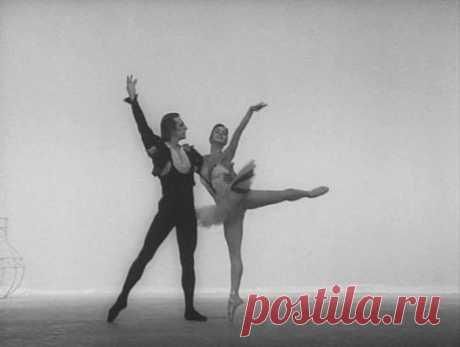 Мастер виртуозного танца - балерина Нинель Кургапкина