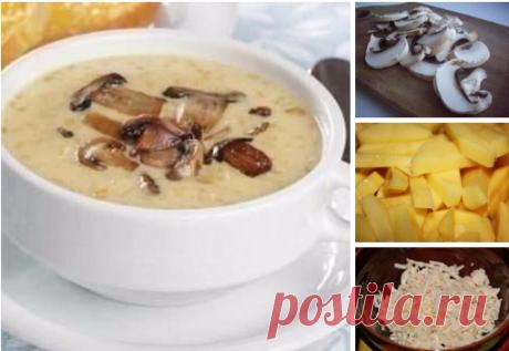 La sopa fúngica con el queso. ¡El aroma a toda la casa!