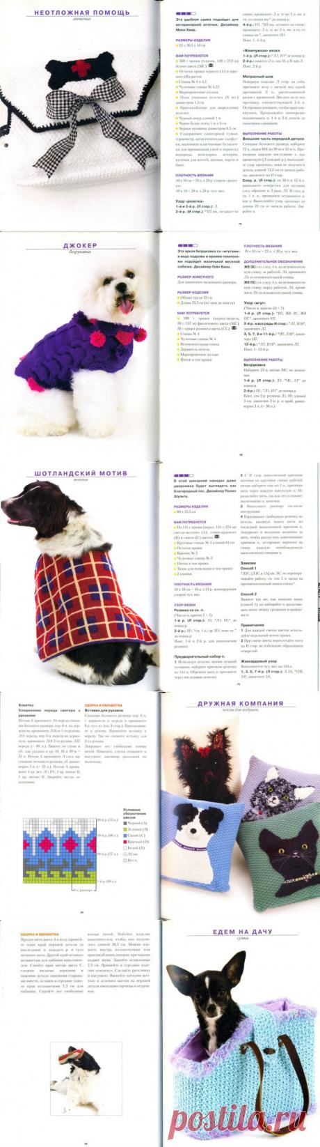 Вяжем для собачек и кошек спицами(часть1): Дневник группы «ВЯЖЕМ ПО ОПИСАНИЮ»: Группы - женская социальная сеть myJulia.ru