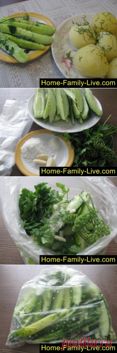 Малосольные огурцы -пошаговый фоторецепт - быстрые малосольные огурцыКулинарные рецепты