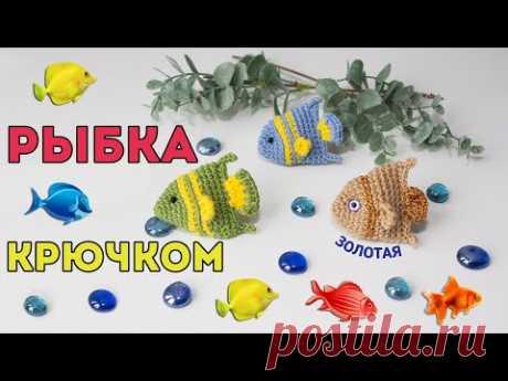 Золотая рыбка крючком 🐟 простая игрушка амигуруми, мастер - класс