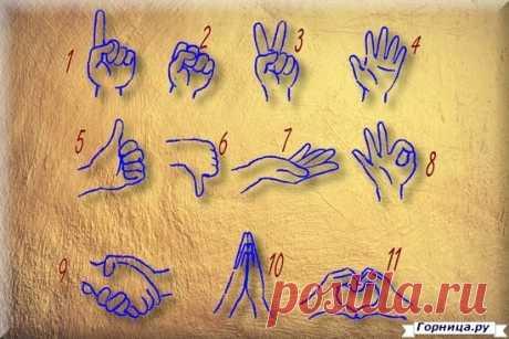 ГОРННИЦА | Тест: Какой жест вы используете чаще? Это показывает доминирующую черту вашей личности.