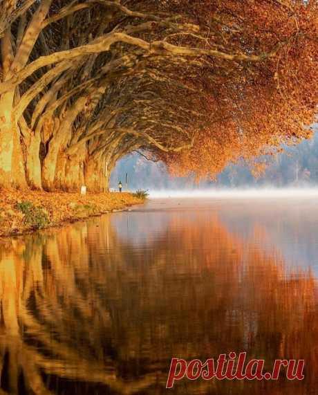Красавица осень (Эссен, Германия) ...