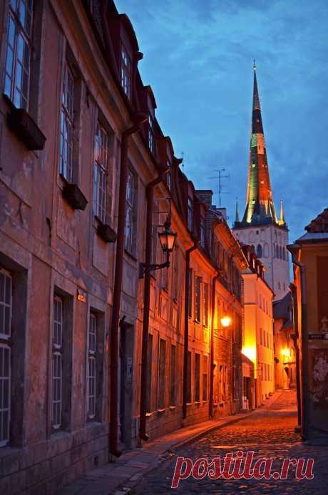 Тайны старого Таллина | Все о туризме и отдыхе