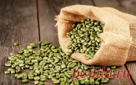 Зеленый кофе: польза и вред, как приготовить и пить в домашних условиях В последние годы зеленый кофе стал очень популярным. Однако не все знают, какими свойствами он обладает. Зная, какое воздействие он оказывает, удастся улучшить состояние здоровья.