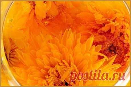 Травяной настой для печени.  Чай из календулы с семенами моркови хорошо помогает при заболеваниях печени и желчного пузыря, способствует желчеотделению и уменьшению воспаления при холециститах и гепатитах.   Ингредиенты: 2 ст. ложки цветков календулы, 200 гр. кипятка, 1 ст. ложка семян моркови, 400 гр. горячего молока.  Залейте цветки календулы кипятком и поставьте настаиваться 2 часа. Почти кипящим молоком залейте семена моркови и поставьте в темное место на 1 час. Когд...