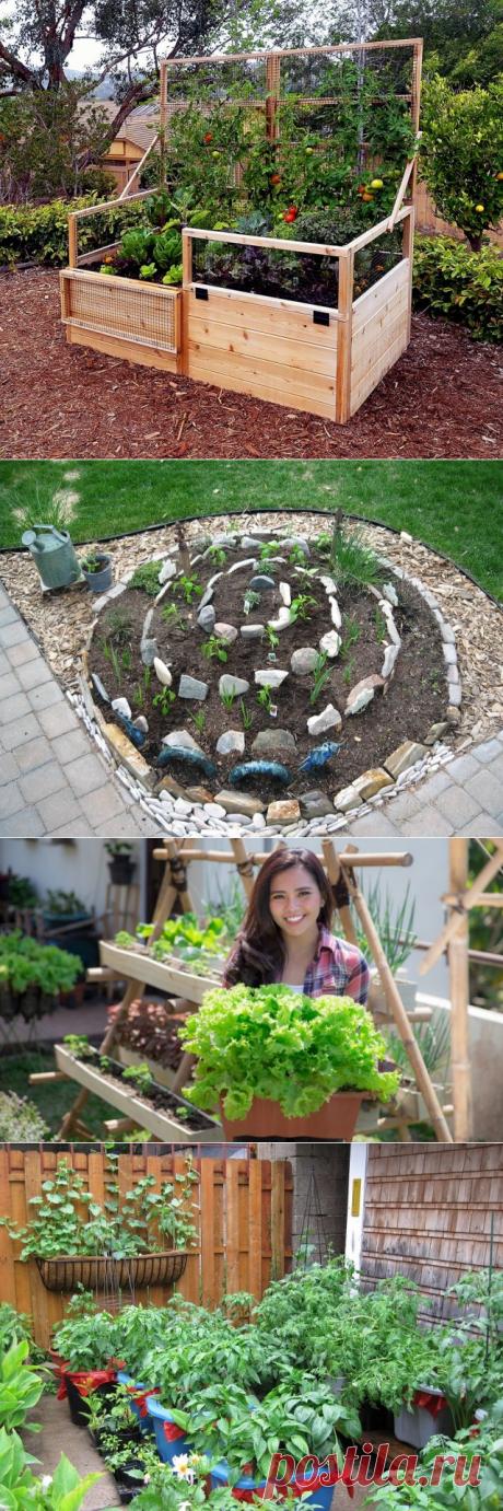Красивый огород своими руками – 22 идеи по обустройству грядок | Вдохновение (Огород.ru)