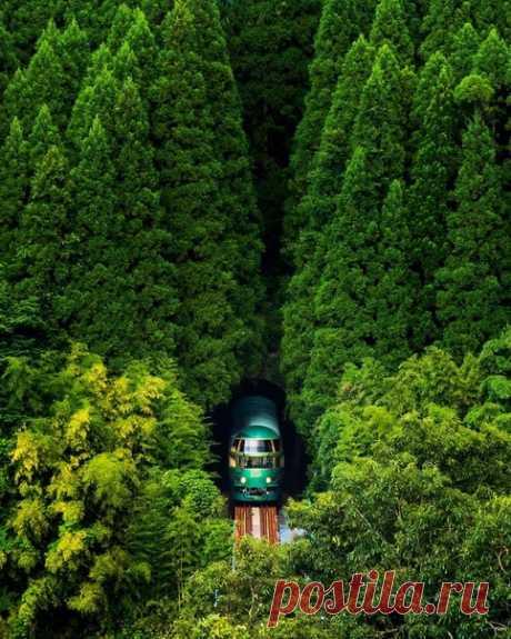 Оита, Япония