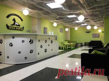 Ветеринарная клиника в Новосибирске, цены на услуги - Ноев ковчег - ветеринарная клиника в Новосибирске