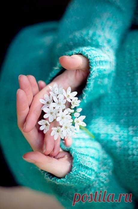 Доброе утро!  Пусть ваш день наполнится добром, радостью, улыбками, и, конечно, замечательным настроением
