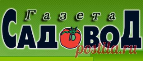 """Garden hints No. 19(2018)\"""" """"Газета садовод"""" - network edition"""