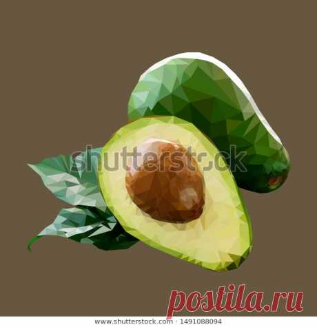 Avocado Low Poly Style. Vector Stock Illustration.
