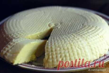ТОР - 14 Подборка вкусных домашних сыров!  1.Домашняя моцарелла.  Ингредиенты: На 2 порции:  ●1 л молока  ●125 г натурального йогурта  ●1,5 ч.л. соли (можно больше, кто как любит) получается не сильно солёная  ●1 ст.л. уксусной эссенции (25%)  Приготовление: Молоко с солью нагреть, но не доводить до кипения. Добавить йогурт, перемешать, добавить уксус, хорошо перемешать и убрать с плиты. Дуршлаг застелить чистой марлей свёрнутой примерно в 4 слоя, вылить туда свернувшееся ...
