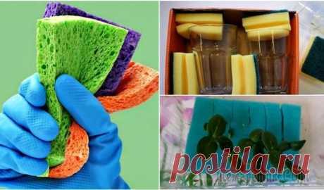 Скрытые возможности поролоновой губки Как правило, поролоновую губку используют на кухне для мытья посуды. Однако ей можно найти немало других применений в быту. Губка поможет и во время переезда, и при ремонте. Главное, знать, как оптима...