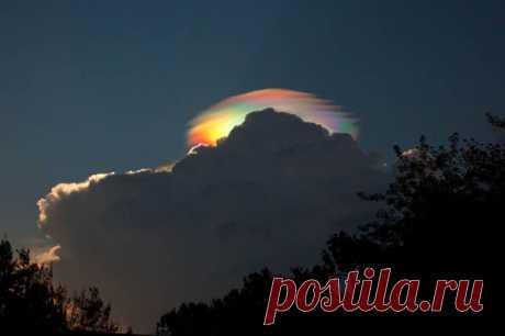 Радужное облако. Так называемые радужные облака – относительно редкое явление. Эти облака могут быть окрашены во все цвета спектра. Они состоят из маленьких водяных капелек практически одинакового размера. Радужные облака появляются тогда, когда Солнце занимает определенное положение на небе и при этом практически полностью спрятано за более плотными облаками.