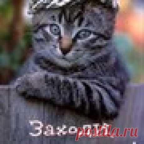 Лена Шарова