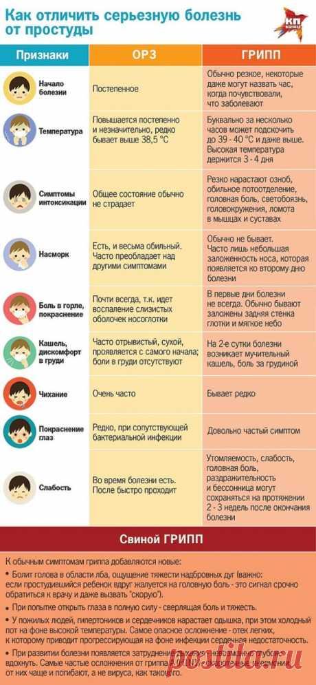 Как не подхватить грипп: восемь простых советов от Геннадия Онищенко