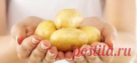 Польза картофельного сока и лечение - ЗЕЛЁНАЯ СИЛА МАКОШИ - Группы Мой Мир