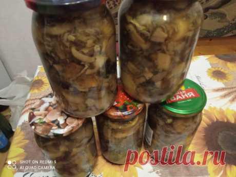 Маринованные грибы на зиму — рецепт на 1 литр воды. Вкусная закуска, в магазине такой не купишь | Блоггерство на пенсии | Яндекс Дзен