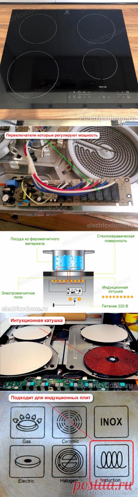 Индукционная варочная панель или электрическая что лучше