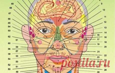 Что каждый может узнать о себе по лицу — проекционные зоны по Огулову Читать далее...
