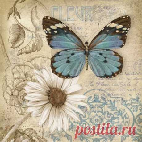 Бабочки, птички, курочки-петушки. Комментарии