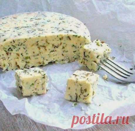 El queso de casa con la verdura y el comino | Golbis