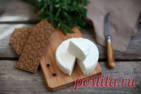 Молодой адыгейский сыр за 1 час - 15 Октября 2018 - Наша Планета