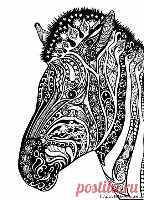 Horse- лошади(шаблон)